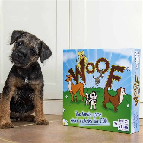 places to board dogs woof board the plays seen on itv phillip schofield
