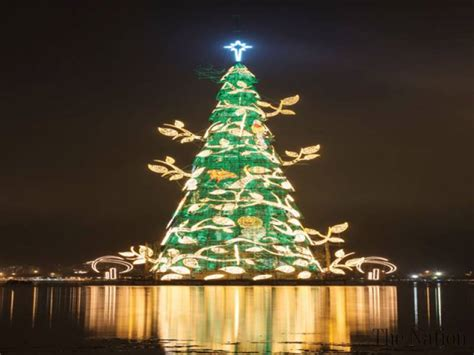 world s largest christmas tree lights up in brazil