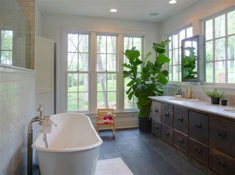 plants for dark bathroom best plants that suit your bathroom fresh decor ideas