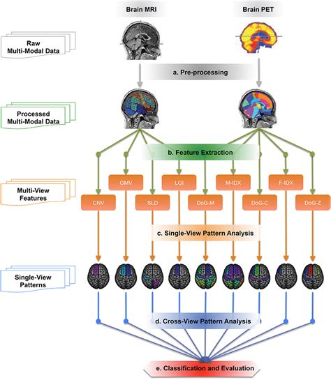 pattern analysis brain frontiers cross view neuroimage pattern analysis in