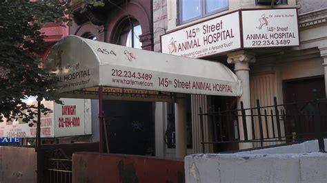 st animal hospital  reviews veterinarians    st harlem  york ny