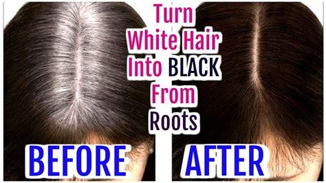 gray hair turning dark again turn white hair into black from roots grey hair hair oil