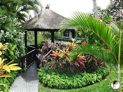 bali backyard designs best 25 bali garden ideas on pinterest balinese garden