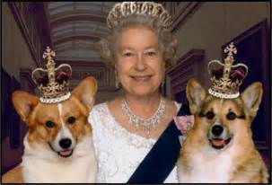 the s corgi keeper of the queen corgis pens explosive new tell all book