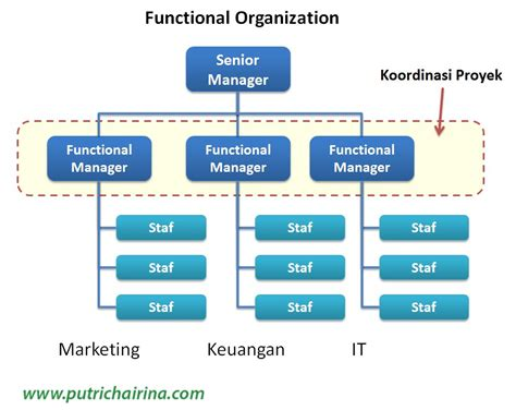 layout fungsional struktur organisasi dalam manajemen proyek serial