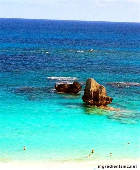 most beautiful beaches pictures to pin on pinterest pinsdaddy horseshoe bay in bermuda one of the word s most beautiful