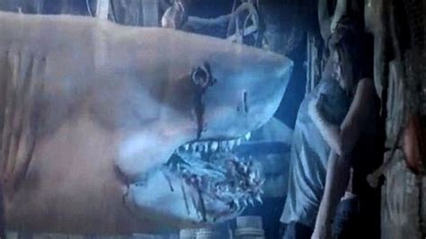 film ghost shark relax s a no water means no ghost shark jakle s jacuzzi