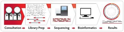 illumina sequencing service next sequencing services