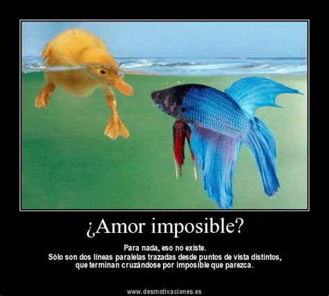imagenes de amor imposible para face para facebook frases imagenes y desmotivaciones