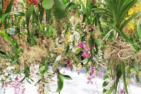 designboom garden teamlab suspends floating flower garden at maison et objet