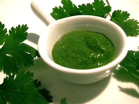 Heavy Metal Detox Cilantro Pesto Recipe by 18 Best Images About Sauces On Olive Garden