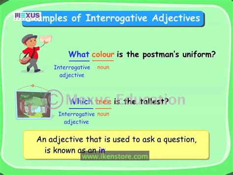 what is an ask interrogative adjectives youtube
