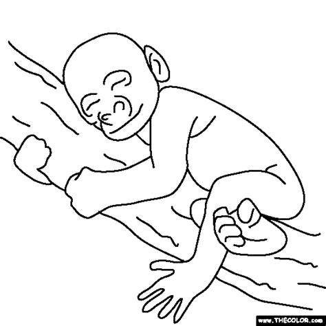 baby gorilla coloring page online coloring pages starting with the letter b