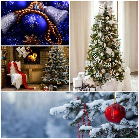 weihnachtsbaumschmuck ideen f 252 r eine zauberhafte dekoration - Weihnachtsbaumschmuck Ideen