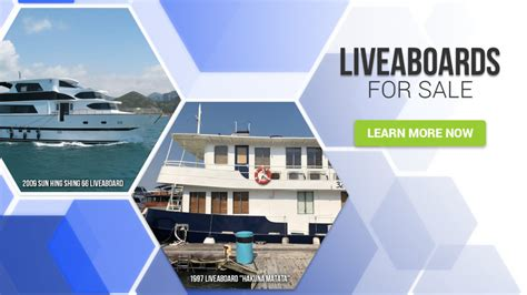 houseboat cost houseboat living cost and expenses basco