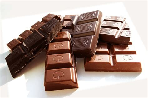 chocolate toxicity 9 foods your cat should never eat the purrington post