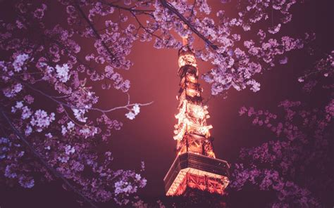 imagenes hd japan tokyo wallpapers hd wallpaper of tokyo available here