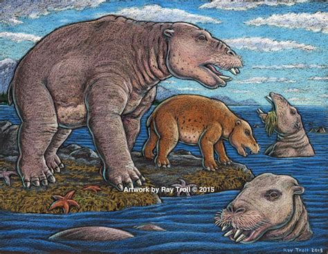 legend boats out of business prehistoric hippo sized marine mammal had jaws that sucked