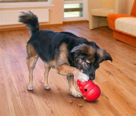 Kong Wobbler Small Mainan Anjing kong wobbler toys small ca pet supplies