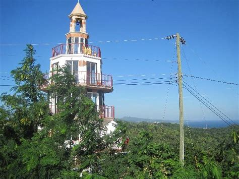 Hn Top Limited island marketing ltd roatan cruise excursions tours coxen honduras top tips before
