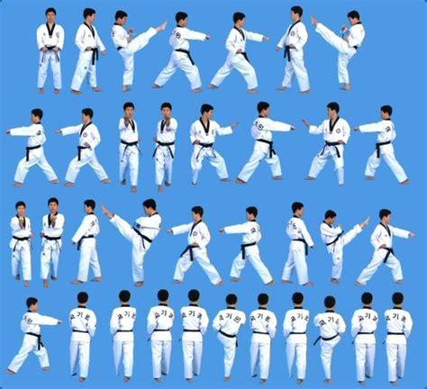karate design form 1 taegeuk sam jang 3 poomsae taegeuk forms pinterest