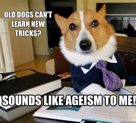 New Dog Meme - old dogs can t learn new tricks sounds like ageism to me