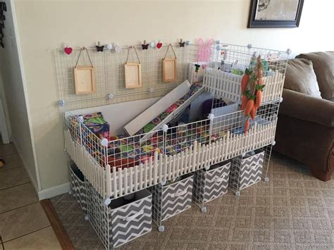 guinea pig bedding ideas the 25 best c c cage ideas on pinterest cages for