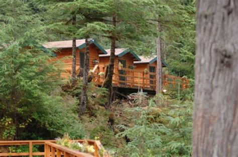 view of lodge dock from cabins picture of el