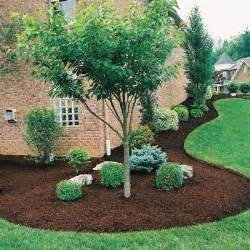 Evergreen landscaping for your beautiful garden was last modified