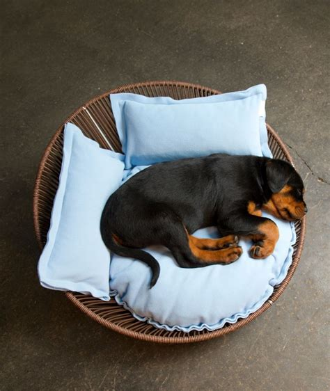 beds for rottweilers 32 best images about rottweiler hundekorb hundebett bed cushion on