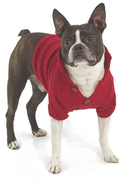 free pattern dog sweater anything can be crochet on pinterest dog sweaters