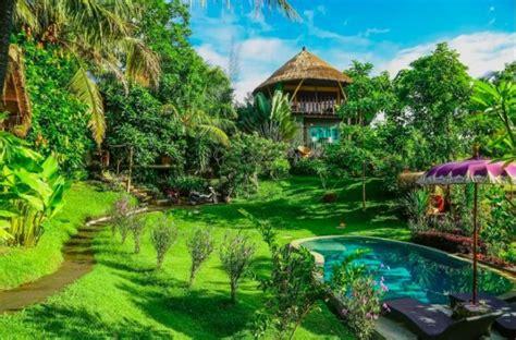famous airbnb ubud villa treehouse  hammock bed