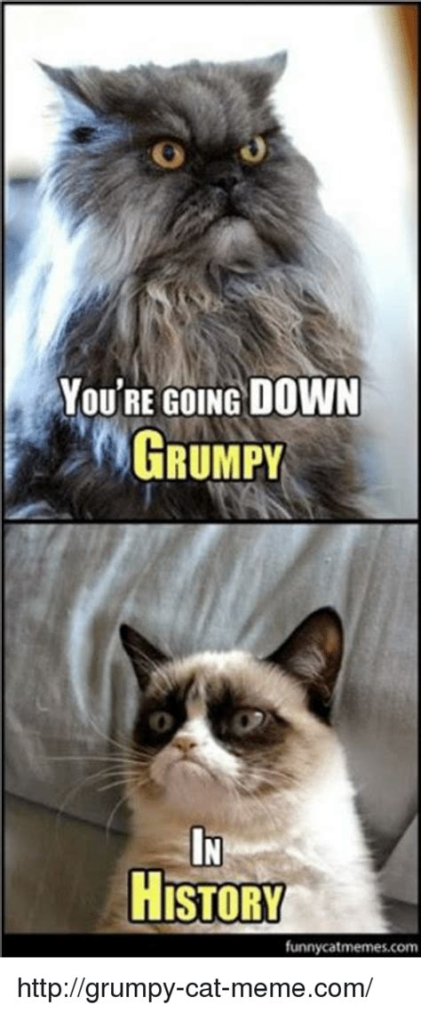 How To Make A Grumpy Cat Meme - 25 best memes about grumpy cat meme grumpy cat memes