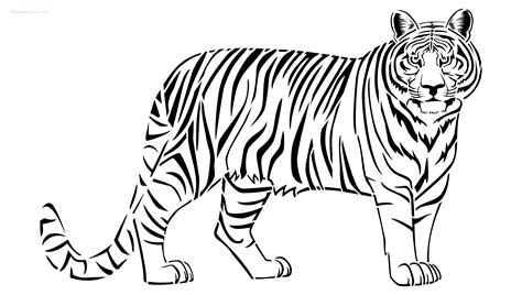 tiger template tiger stencil to buy now