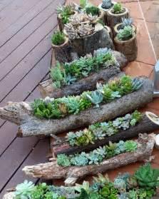 Vertical Garden Planters Diy - 70 indoor and outdoor succulent garden ideas shelterness