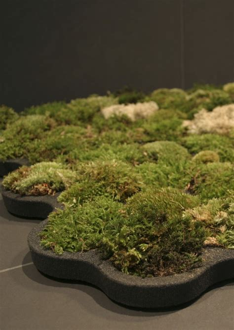 living moss bath mat by nguyen la chanh homeli