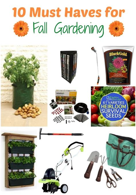 Gardening Must Haves 10 Must Haves For Fall Gardening The Home And Garden Cafe
