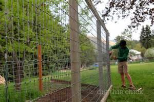 Cheap Garden Trellis The Fence Zen Hen Dig This