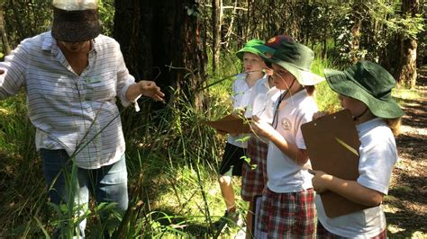 Eurobodalla Regional Botanic Gardens Growing Our Future Scientists Narooma News