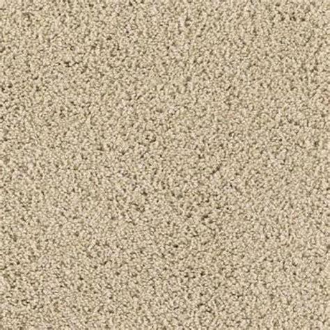 lifeproof carpet sle ashcraft ii color canvas cloth