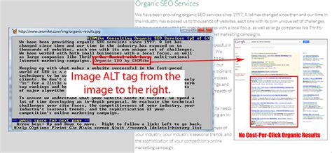 alt image tag do image alt tags matter seomike consulting