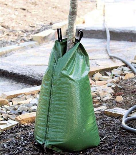 tree bags produktberater treegator wurzelbew 228 sserung