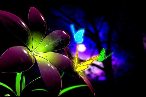 colorful butterfly wallpaper free download beautiful butterfly colorful desktop hd wallpaper best