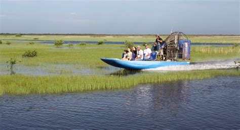 everglades airboat tours fort myers 7 things to do in fort myers with your grandchildren