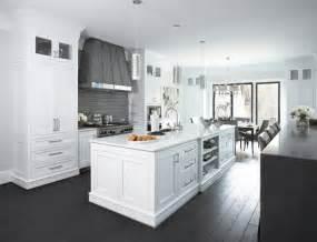 White and grey kitchen contemporary kitchen sherwin williams pure