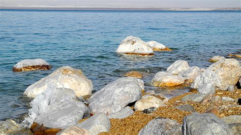 10 Things You Need To About Dead Sea Products by Things To Do In The Dead Sea David S Been Here