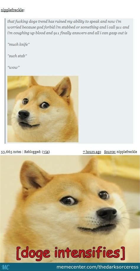 my plan is working foolish humans i mean wow such doge