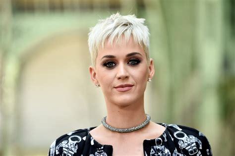 Katy Perry Hairstyle by Katy Perry Hair Looks Stylebistro
