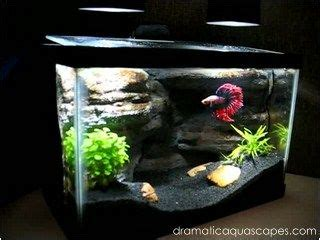 Dramatic Aquascapes by Best 25 Aquarium Backgrounds Ideas On