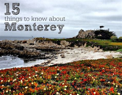 During My Recent Trip To California I Did Somethi by 15 Things To About Monterey Ca